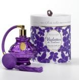 Violettes-de-Toulouse_Berdoues