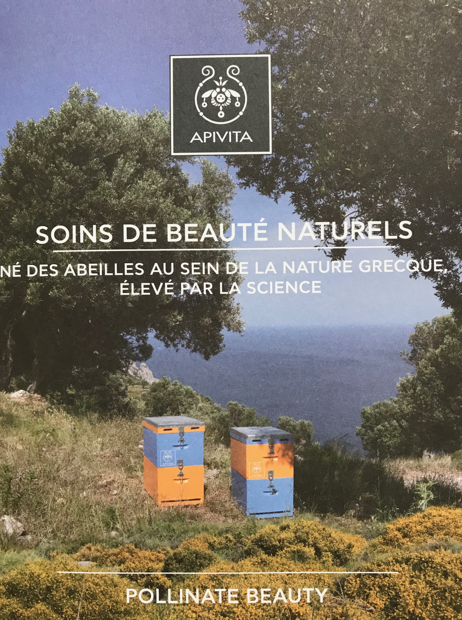 Maison Et Chocolat Uriage Les Bains https://bioutibox.wordpress/2019/06/10/bensimon